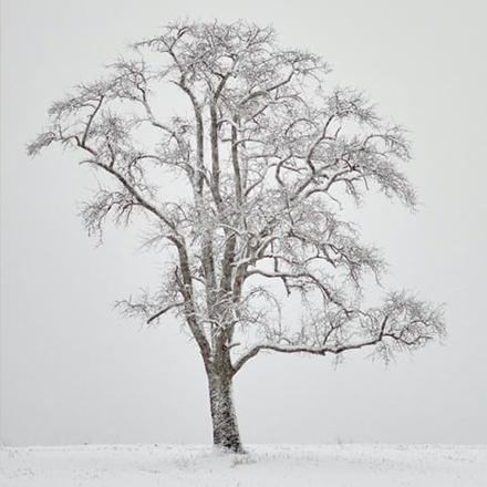 冬天  怀旧 温柔 温暖